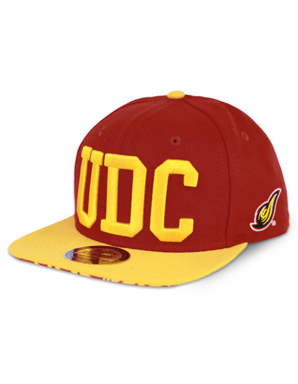 DISTRICT OF COLUMBIA SNAPBACK